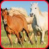 Horse-spirit game 2 APK