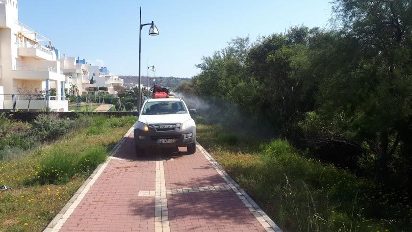Desarrollo de los trabajos llevados a cabo en zonas verdes de Almerimar.
