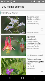 South Dakota Wildflowers- screenshot thumbnail