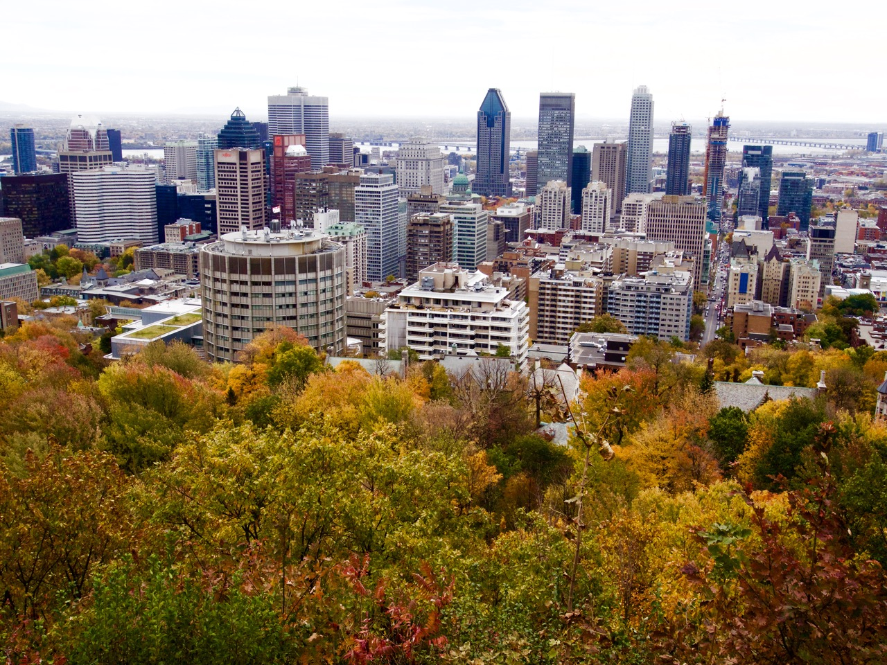 The view from Mont-Royal - things to do in Montreal