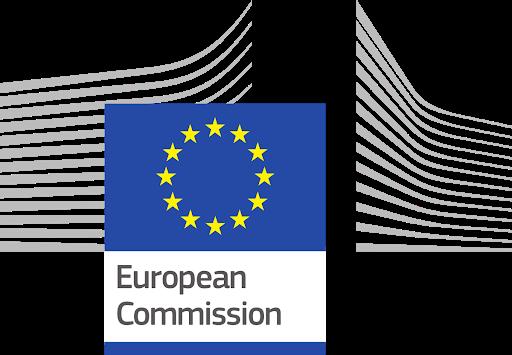 European Digital Skills Award, 2017