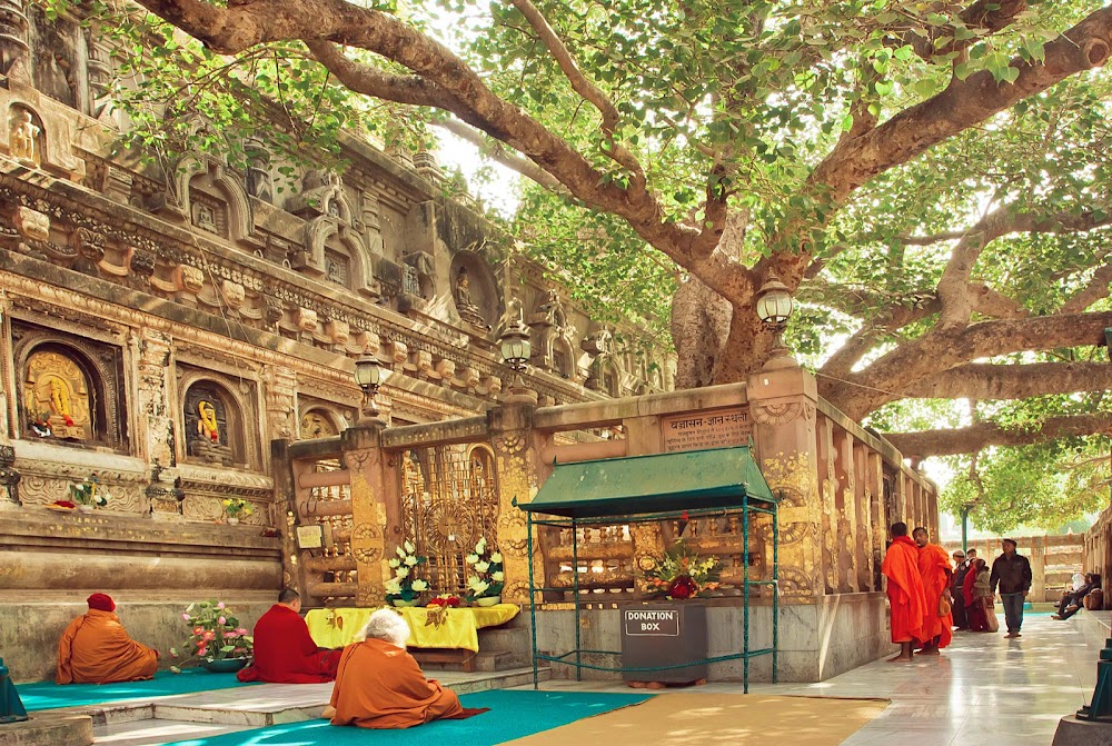 ultimate-guide-best-tourist-places-india-_Bihar