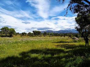 Photo: Prés de Fauche et zones pastorales