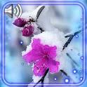 Winter Snow Flowers icon