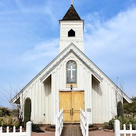 Elvis Church by Dawn Hoehn Hagler - Buildings & Architecture Places of Worship ( elvis church, arizona, church, elvis, apache junction )
