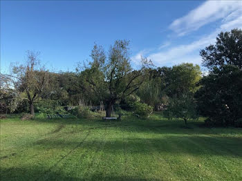 terrain à Beaulieu (34)