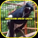 Masteran Kacer Gacor icon