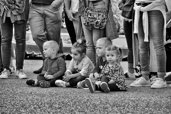 Quattro piccoli spettatori di giuseppedangelo
