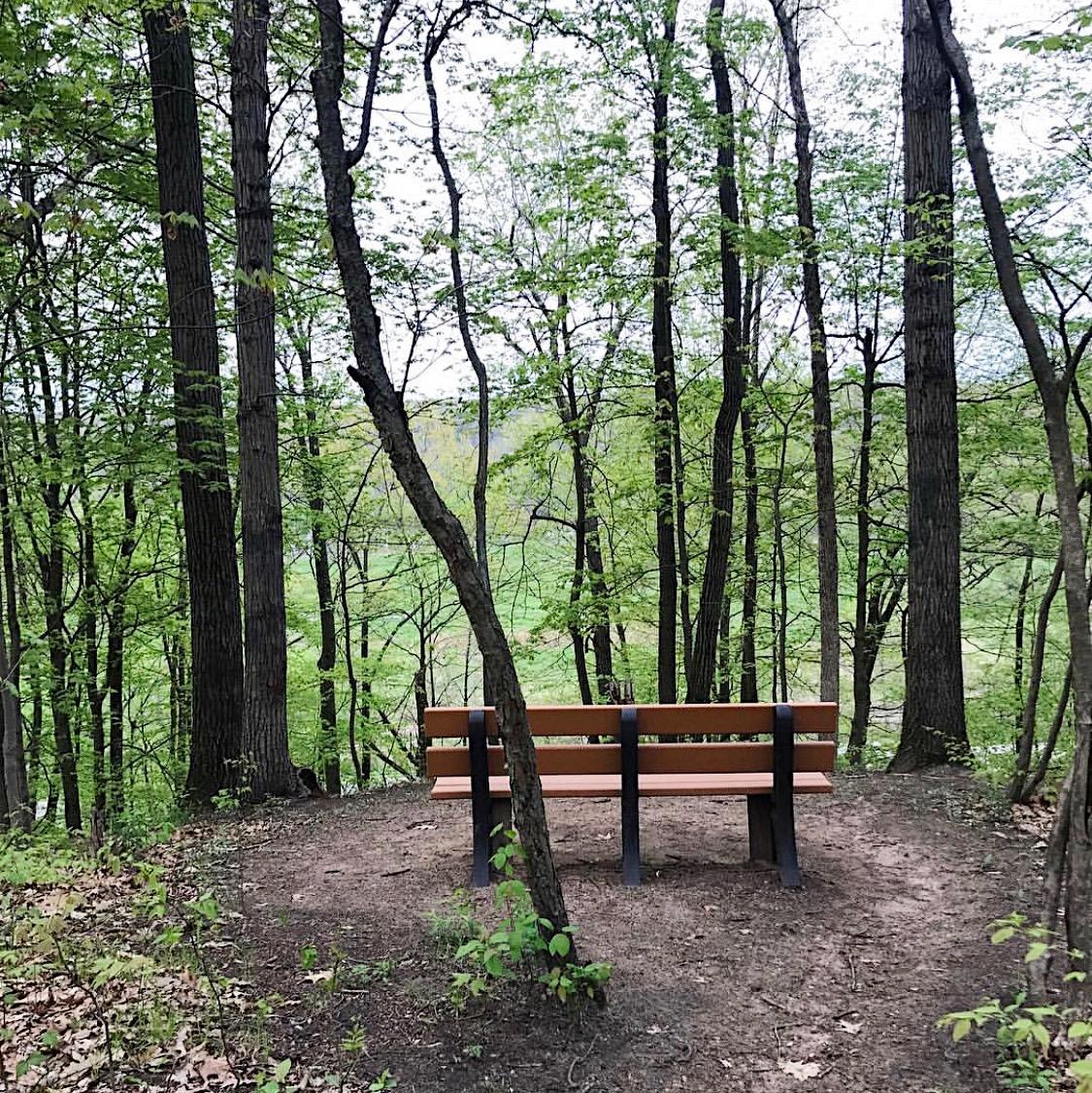 Hiking Trail Grand Rapids