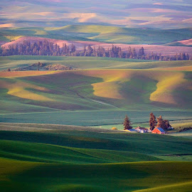 Red barn amongst rolling hills by Gale Perry - Landscapes Prairies, Meadows & Fields (  )