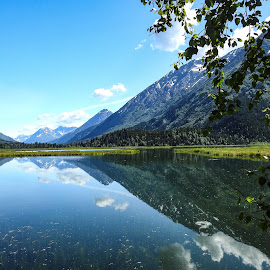 Tern Lake by Patricia Phillips - Landscapes Travel ( alaska lakes tern summer reflections )