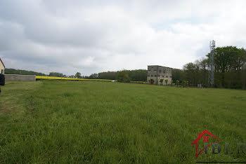 terrain à Saint-valerien (89)