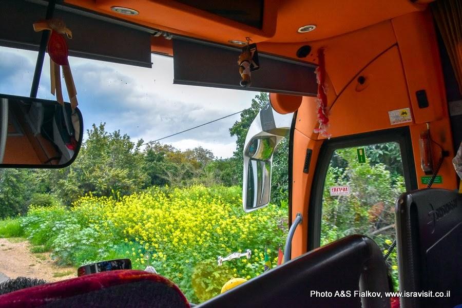 На автобусной экскурсии по северу Израиля.