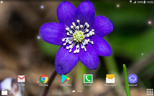 Beautiful Spring Flowers Live Wallpaper 1.0.4 screenshots 11