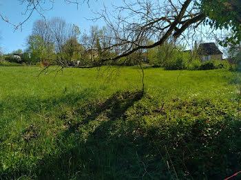 terrain à Saint-Pompont (24)