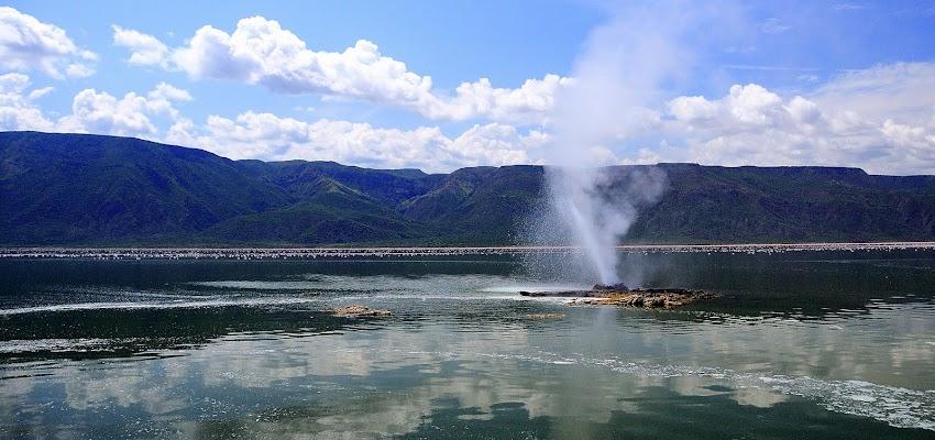 Bogoria lake di vitomaso