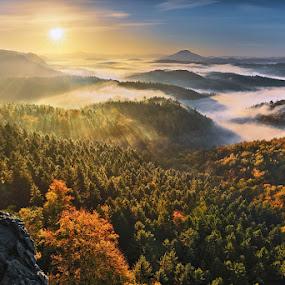 National Park Czech Switzerland by Evžen Takač - Landscapes Sunsets & Sunrises ( inversion, mountains, fog, fall, sunrise, sun, national park czech switzerland )