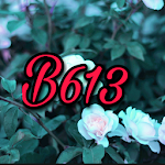 B613 beauty and filter camera icon