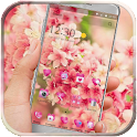 Beautiful Flower Theme icon