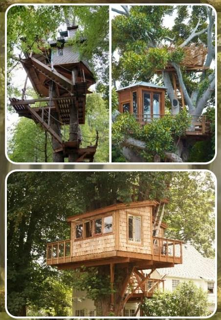 DIY Tree House Designs - Android Apps on Google Play