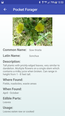 Pocket Forager - screenshot