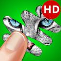 Scratch Game: Animals Quiz icon