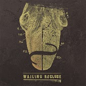 Wailing Recluse