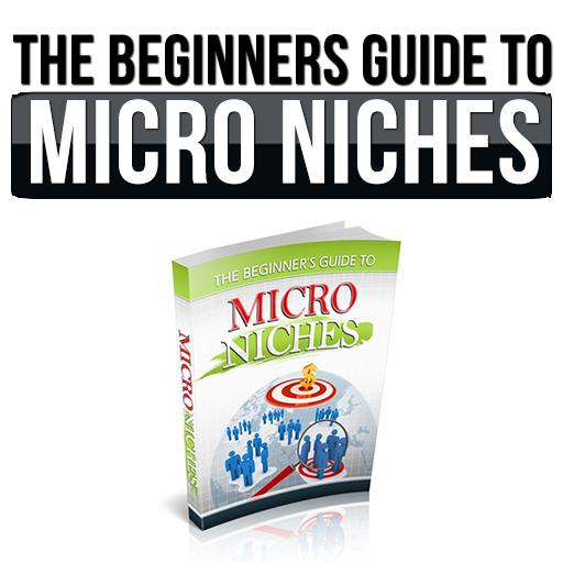 Getting started: Micro Niches