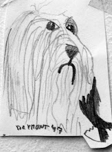 Photo: Alex always loved drawing bearded collies {9 years old}