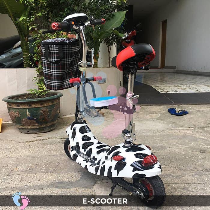 Xe điện E-Scooter mini gấp gọn 6