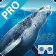 Sea World VR2(Pro)