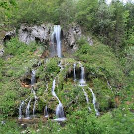 Waterfall by Ovidiu Gruescu - Nature Up Close Water