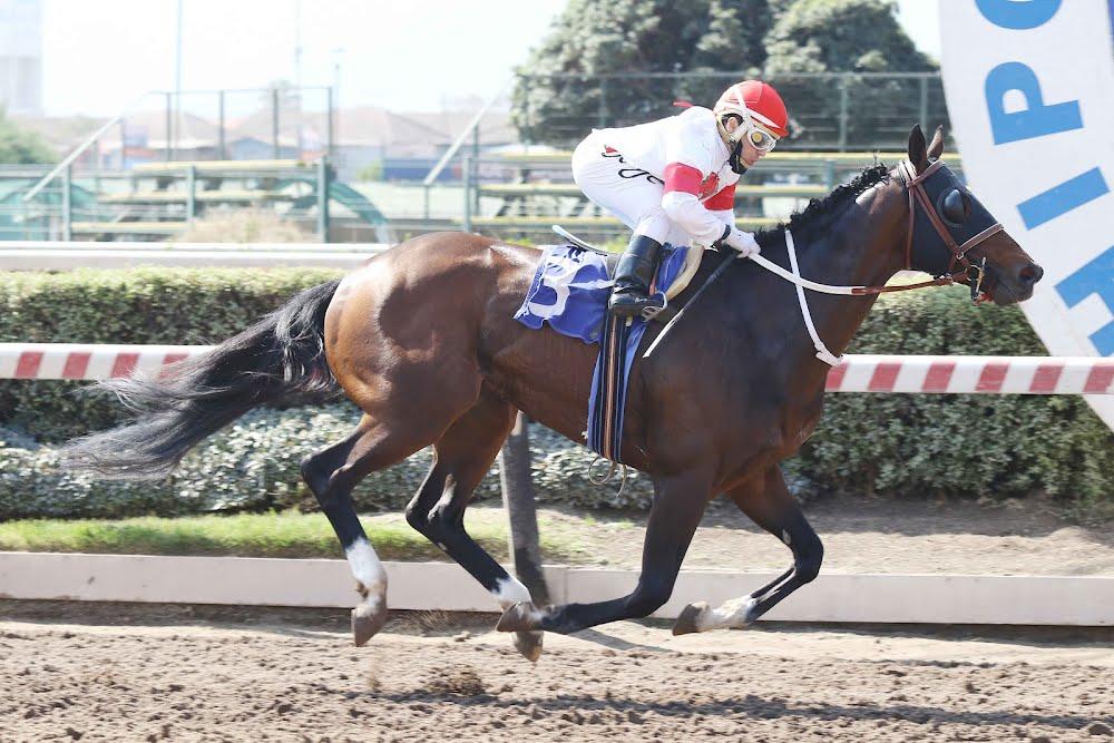 Trae Alegria (Lookin At Lucky) gana el Clásico Ismael Rengifo Echeverria (1900m-Arena-HCH).