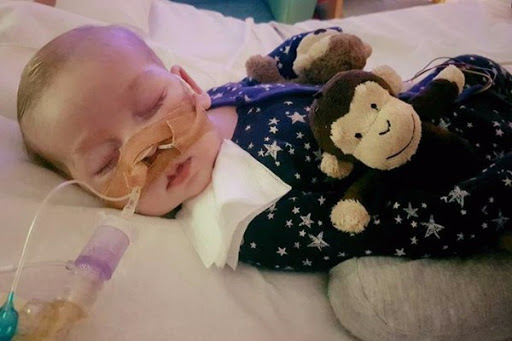Parents of endangered Charlie Gard express gratitude to Pope and Trump
