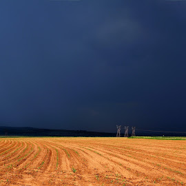 Tempest over the cornfields by Cobus van Zyl - Landscapes Prairies, Meadows & Fields ( rain, storm, field, thunderstorm, crops )