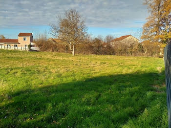 terrain à Bellerive-sur-Allier (03)