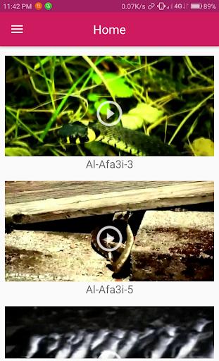 Mobile TV - Entertainment 1.4 app download 2