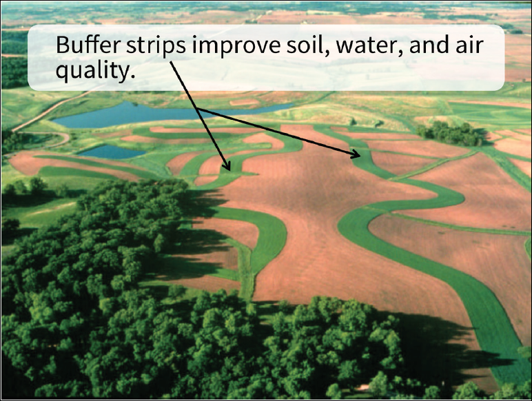 Redesigned slide with an aerial photo of a field with large text and an arrow showing Buffer strips improve soil, water and air quality.