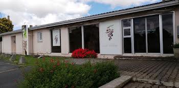 locaux professionels à Saint-estephe (33)
