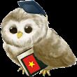 Apprendre le Vietnamien icon