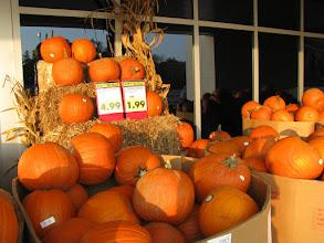 Photo: канадцы готовятся к хэллоуину