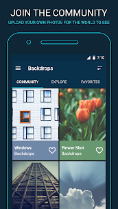 Backdrops – Wallpapers 3.1 [Pro Features Unlocked] MOD Apk 4