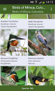 Minca Bird Guide, Colombia - náhled