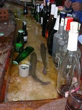 Photo: Kahvaltı - Saat: 06.00 - Alabalıklar kedi gibi seviliyor. Tlos Yakapark - Kalkan - 17.04.2010