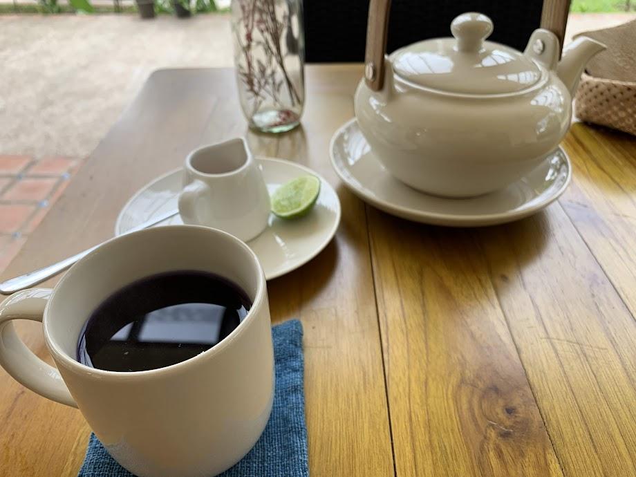 バタフライピー茶