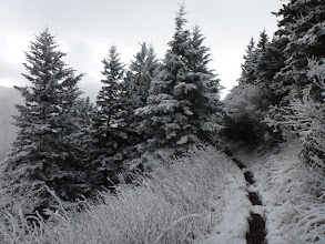 Photo: Snow in The Great Smokey Mtns. National Park