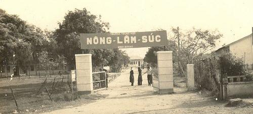NLSBD-Congtruong