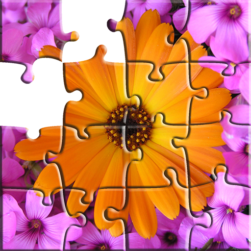 Puzzles: Flowers & Nature
