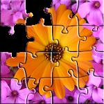 Mindfulness Nature Icon