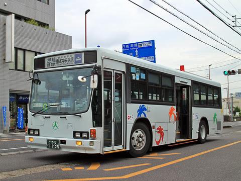 三州自動車 志布志~垂水線(大崎経由) 1194
